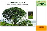 Kapok-Baum (Ceiba pentandra)